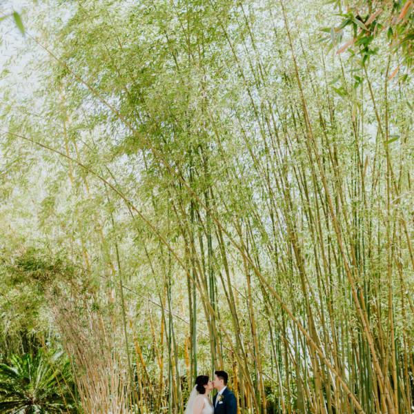 Charming Botanic Garden Union