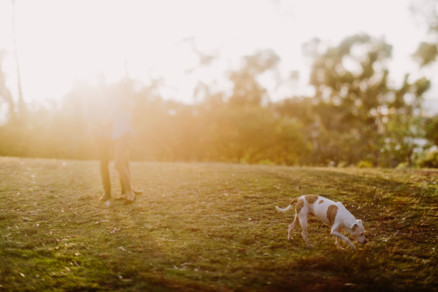 Playful Park Snuggles with Pup – Photo by Let's Frolic Together