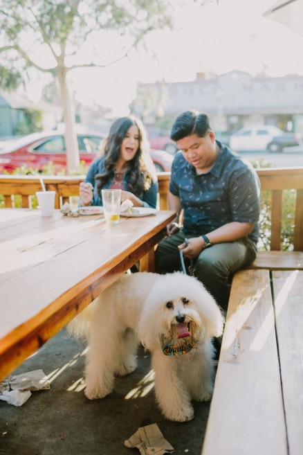 A Pizza & Puppy Engagement – Photo by Let's Frolic Together