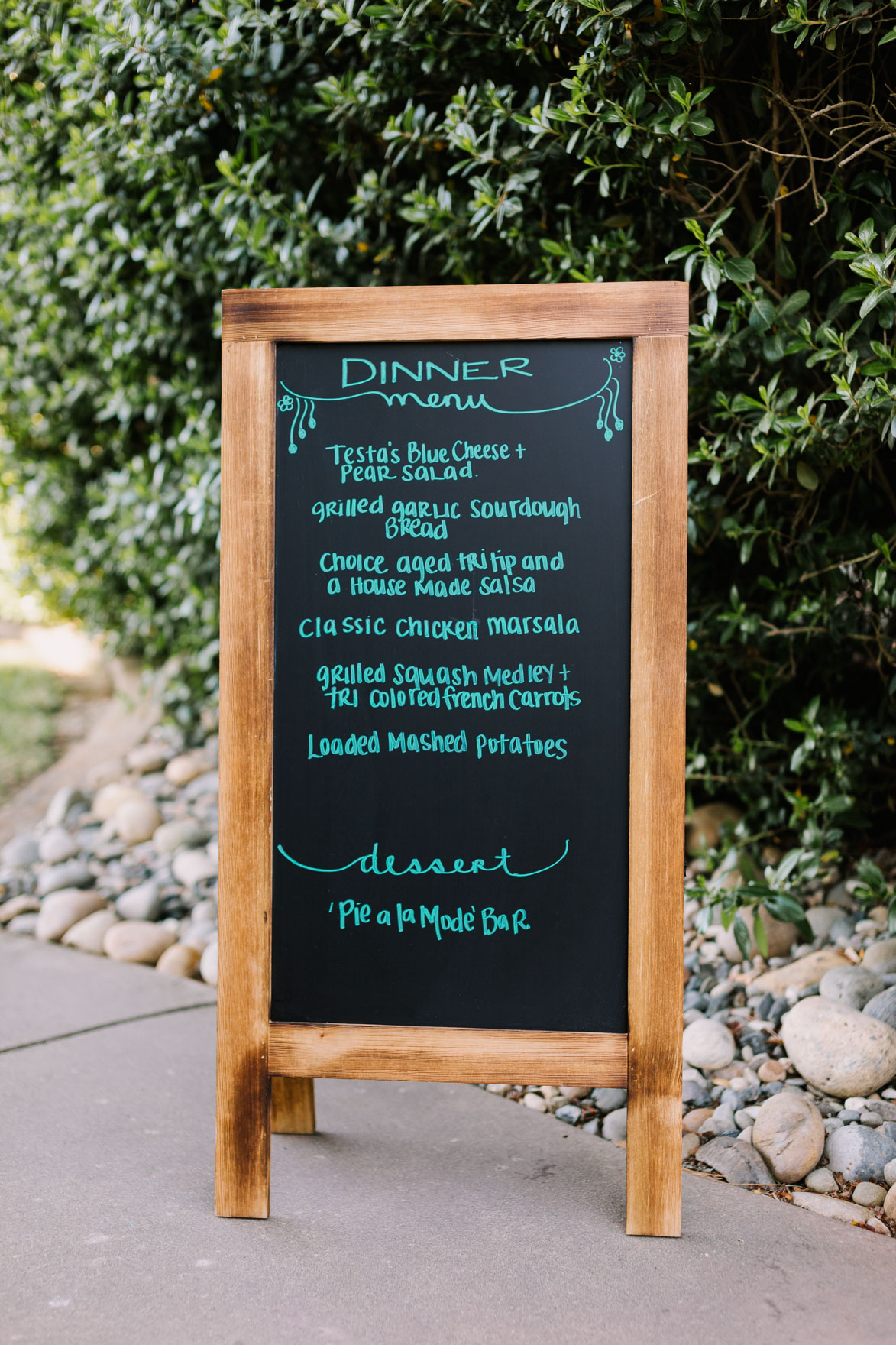 A Vineyard & Backyard Bash – Photo by Let's Frolic Together