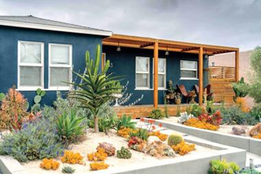 My Desert Garden Home